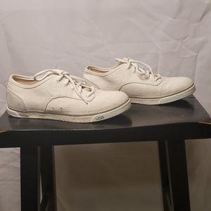 NWOB UGG Sleek Canvas Sneaker w/ Sheepskin Heel